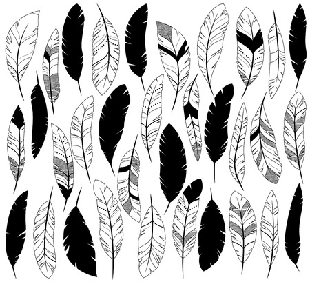 Vector Set of Stylized or Abstract Feathers and Feather Silhouettes Vettoriali