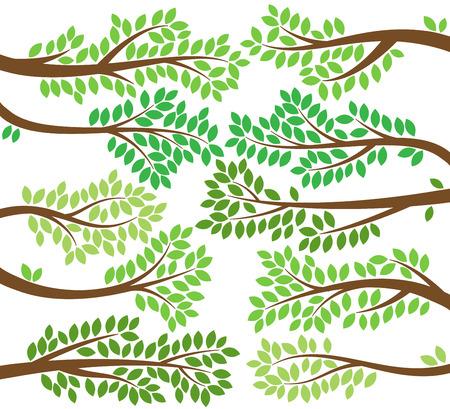 arbol p�jaros: Colecci�n de vectores de frondosa rama de �rbol Siluetas Vectores