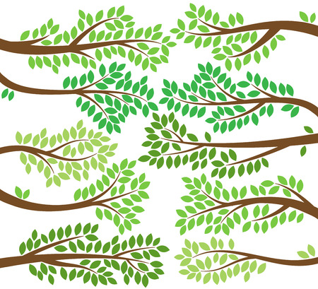 branch isolated: Vector Collection of Leafy Tree Branch Silhouettes