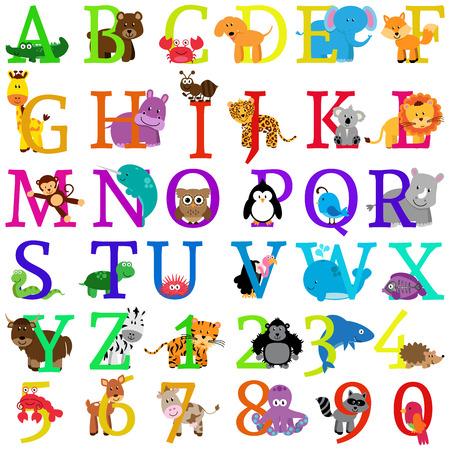 Vector Animal Themed Alphabet Vector