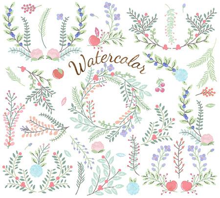 helechos: Acuarela Colecci�n de vectores de flores - Grande para las bodas y otras celebraciones