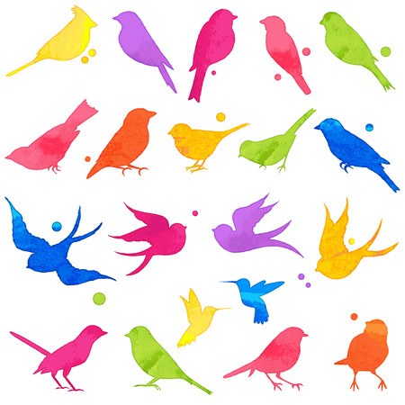 Vector Collection of Bright Watercolor Bird Silhouettes Çizim