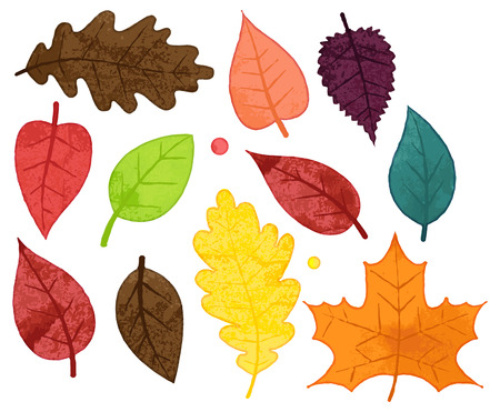 Vector Collection of Watercolor Style Autumn Leaves