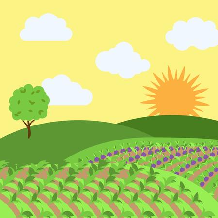 Vector Farm Themed Background Ilustração Vetorial