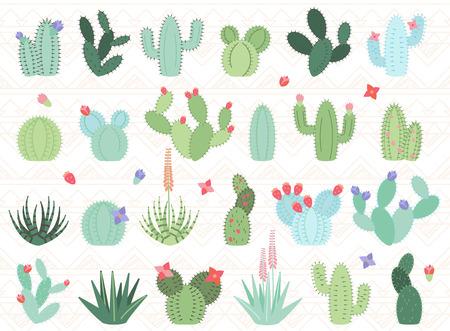 Set di cactus e piante grasse