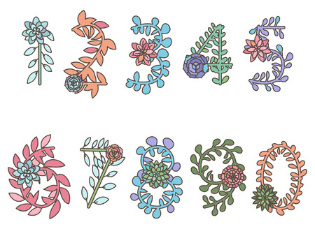 types of cactus: Collection of Detailed Succulent or Cactus Letters and Alphabet