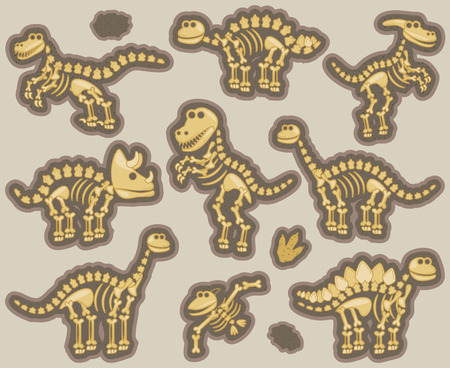 archaeological: Collection of Dinosaur Bones Illustration