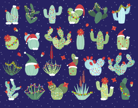 Christmas or Holiday Themed Cactus and Succulent Collection