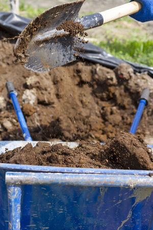 肥料を注ぐ