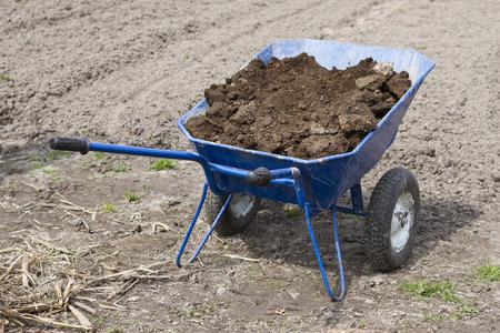 manure: Wheelbarrow with manure