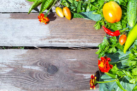 Vegetables and herbs in an assortment on a wooden board.
