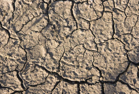 a dry earth ground photo
