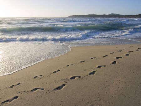 huellas pies: huellas de una persona en la h�meda arena de una playa