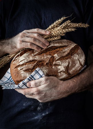 Baker man holding rustic organic loaf of bread and wheat in hands - rural bakery. Natural light, moody still life with free text space good for cover or poster. Archivio Fotografico