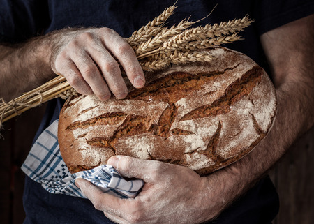 Baker man holding rustic organic loaf of bread and wheat in hands - rural bakery. Natural light, moody still life.