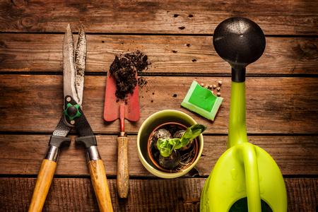 Narzędzia ogrodnicze, konewka, nasiona, rośliny i glebę na vintage drewnianym stole. Wiosna w ogrodzie koncepcji.