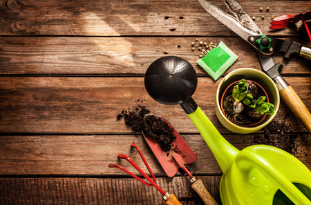 Gartengeräte, Gießkanne, Samen, Pflanzen und Boden auf Vintage Holztisch. Frühling im Garten-Konzept Hintergrund mit Raum für freien Text.