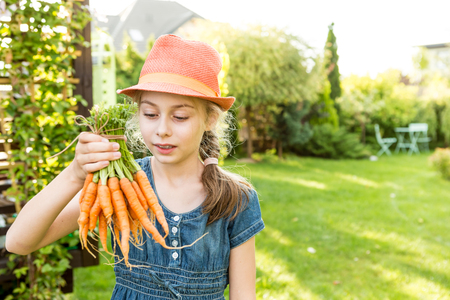 Eight years old pretty blond caucasian child girl holding bunch of young carrots outdoor in the garden. Healthy lifestyle and gardening concept. Holiday - sunny summer day.