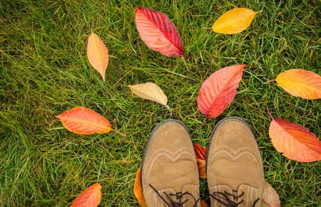 Mans shoes and colorful autumn leaves on green grass (lawn) background captured from above (top view). Fall in the garden - flat lay composition. Stock Photo
