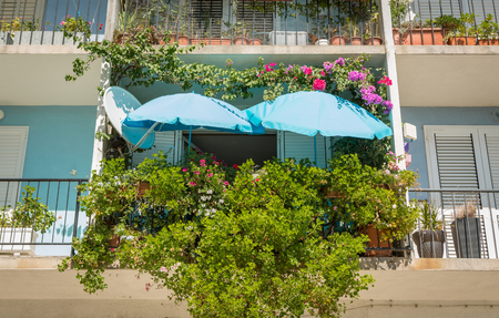 Colorful pot plants garden with blue sun umbrellas on the balcony. Small space gardening idea. 版權商用圖片