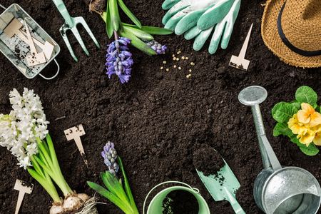 flowers garden: Gardening tools, hyacinth flowers, watering can and straw hat on soil background. Spring garden works concept. Layout with free text space captured from above (top view, flat lay).