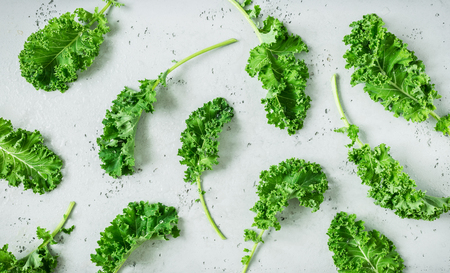 Fresh wet raw green kale leaves captured from above (top view, flat lay). Grey stone worktop as background. Layout with free text (copy) space. Superfood - healthy diet theme.