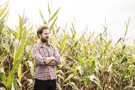 Forty years old caucasian farmer in plaid shirt standing proud in front of corn field. Agriculture - country outdoor scenery. Stock Photo