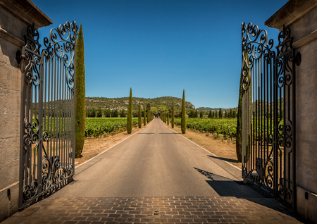 Property entrance gate, driveway, vineyards, cypresses and hills. Summer South Europe countryside landscape. Foto de archivo