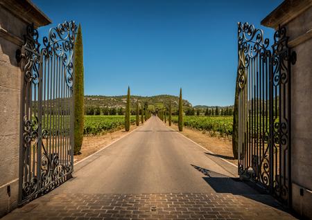 Property entrance gate, driveway, vineyards, cypresses and hills. Summer South Europe countryside landscape. Standard-Bild