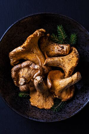 Raw chanterelle mushrooms in a ceramic bowl on black background. Dark moody composition captured from above (top view). 版權商用圖片