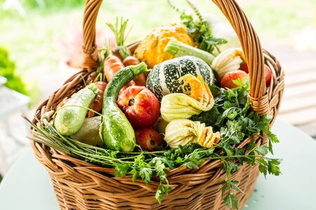 Gardening - colorful organic vegetables outdoor in a wicker basket. Fresh harvest from the garden.