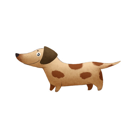 children picture with funny brown dog dachshund on white background