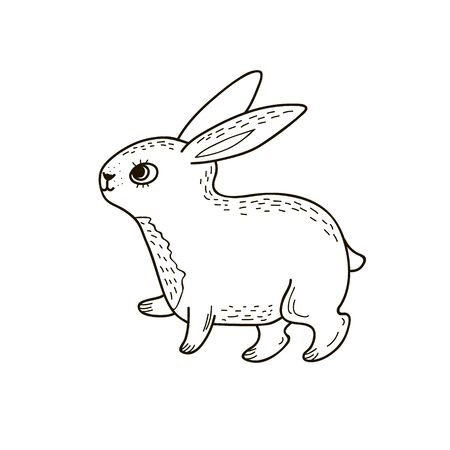 Cute rabbit. Vector linear drawing in doodle style. Hare drawing