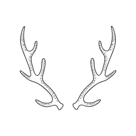 Deer horns. Vector linear freehand illustration in doodle style. Иллюстрация