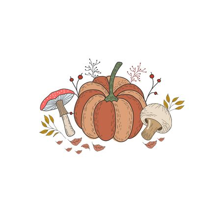 Autumn illustration with pumpkin, mushrooms, leaves and berries. Vector color freehand drawing in doodle style. Halloween figure