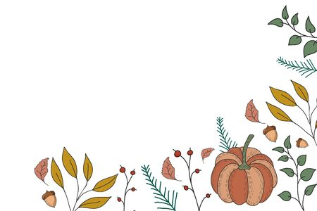 Autumn background with pumpkin leaves with acorns. Vector color illustration on a white background. Banner design. Çizim