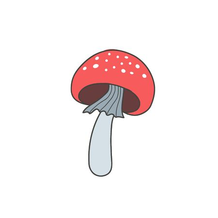Amanita mushroom. Vector color freehand drawing in doodle style