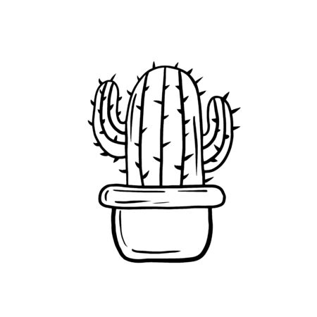 Cactus. Vector linear illustration of a cactus. Sketch drawing of a houseplant