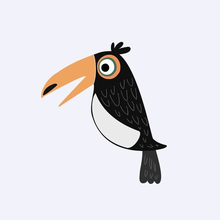 Toucan. Vector color illustration of toucan. drawing of a tropical bird Ilustracja