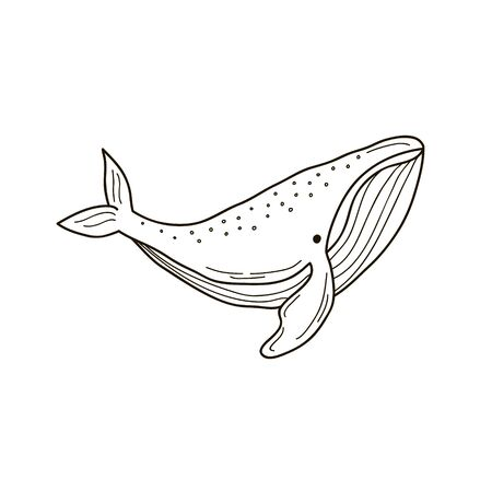 Whale. Vector linear drawing of a whale. Childrens illustration.