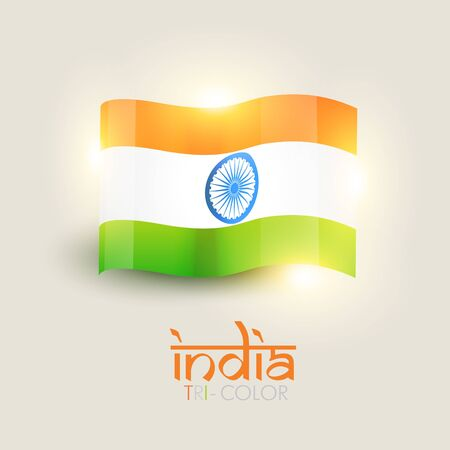beautiful shiny indian vector flag Stock Vector - 14693132