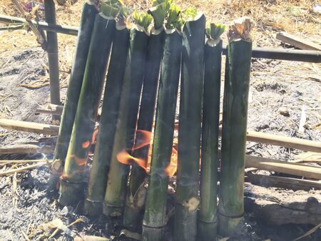 Thai Lam bamboo in the fire