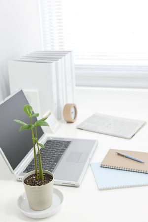 green office: Office desk Stock Photo