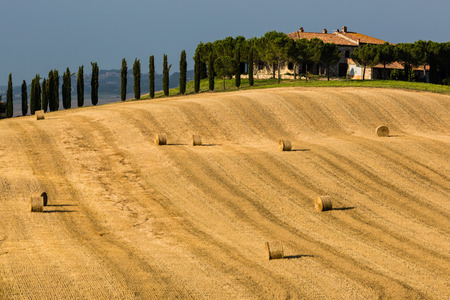 Tuscany Farm photo