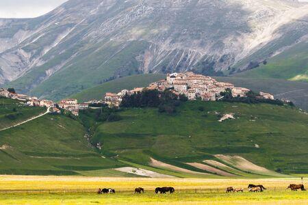 norcia: Castelluccio Of Norcia