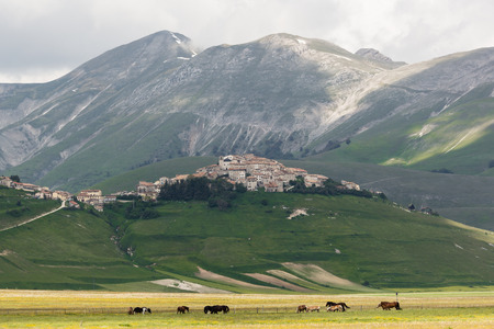 Castelluccio Norcia photo