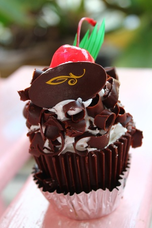 Chocolate cupcake in the garden Stock Photo - 16730538