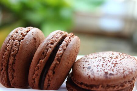 chocolate macaroons Stock Photo - 16730533