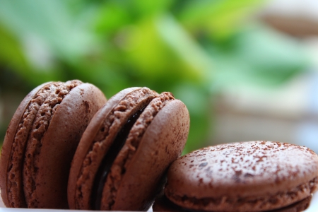 chocolate macaroons Stock Photo - 16730539