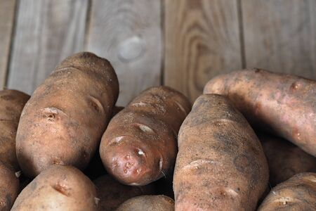 Potatoes on a wooden ancient background. Own farm. Natural product. Stock Photo